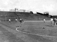 Bloomfield 1938.jpg